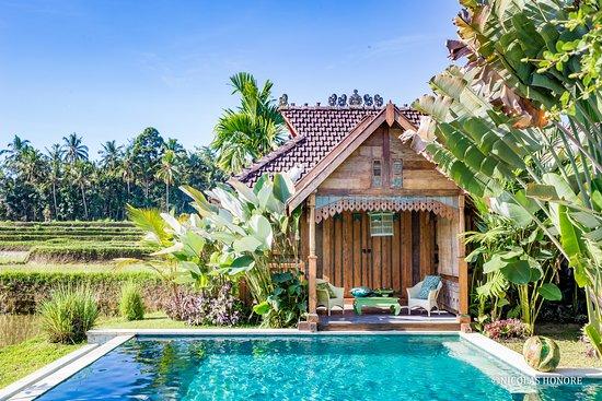 Hati Padi Cottages