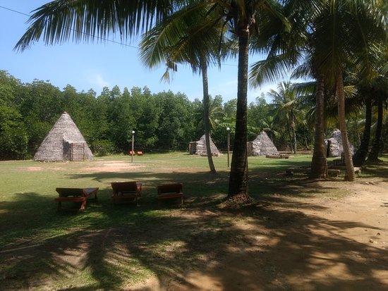 """Camp Kush"" by Hostel Unawatuna"