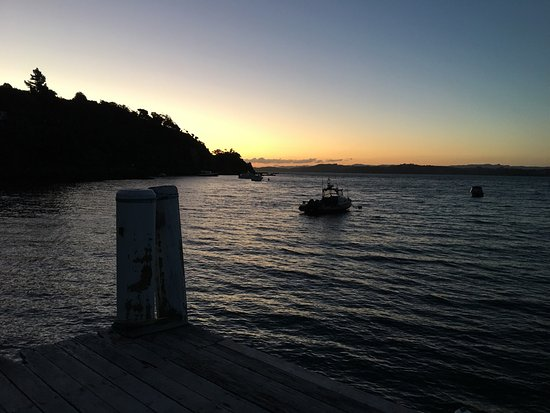 Kawau Island, New Zealand: photo7.jpg
