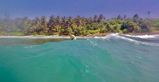 Dikwella, Sri Lanka: photo3.jpg