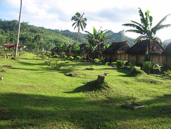 Viti Levu, Fiji: View of bures