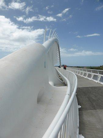 Taranaki Region, Nya Zeeland: Te Rewa Rewa Bridge 01