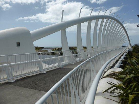 Taranaki Region, Nieuw-Zeeland: Te Rewa Rewa Bridge 02