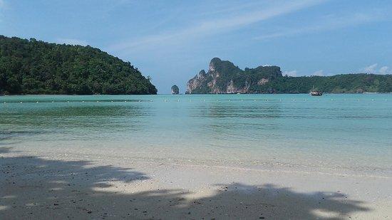 Phi Phi Islands: 20161228_131353_large.jpg
