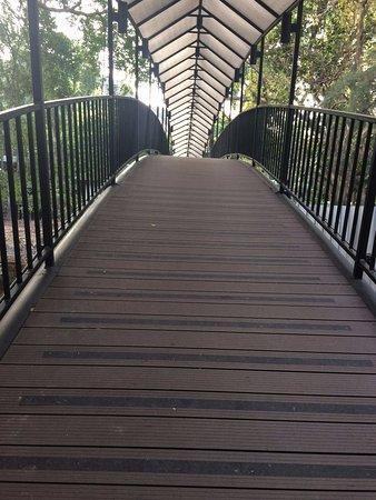 Siam Bayshore: Very steep bridge