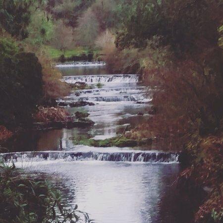 Ashford, Irlanda: Mount Usher Gardens