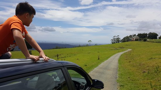 Tamborine Mountain, Australia: Moving between cottage & cabin. Nah .... he didn't. It's a posed picture. :P