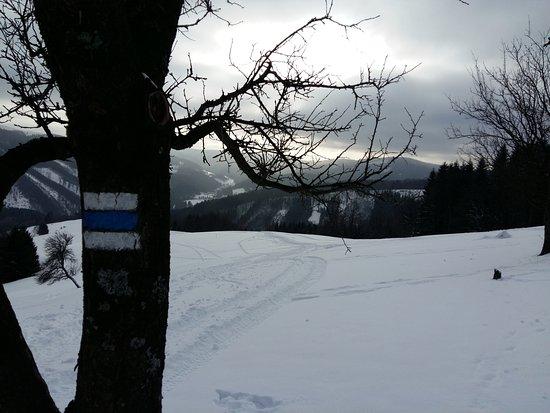 Penzion Rzehaczek: gdzieś na szlaku