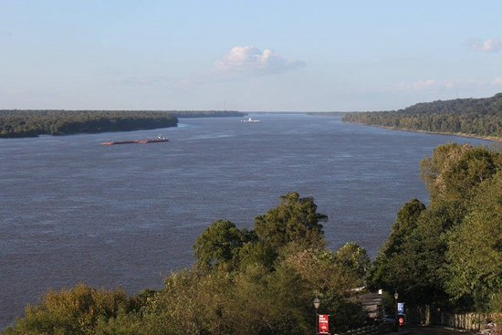 Natchez Grand Hotel : The banks of the river, just outside the hotel