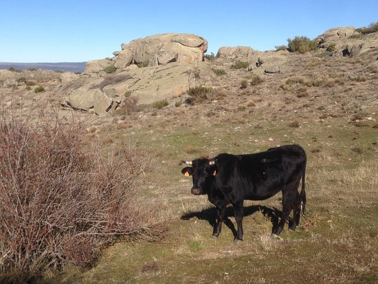 Solosancho, Spain: subida al castro de ulaca
