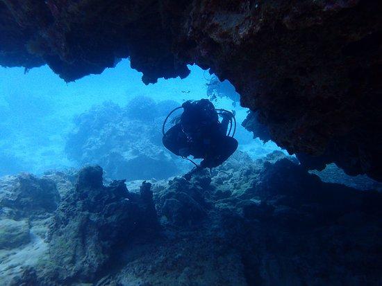Kadena-cho, Japón: Mergulho em Okinawa - Aloha Divers Okinawa