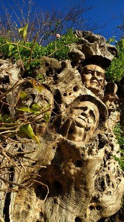 Genalguacil, สเปน: Arbol de las caras