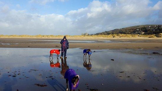 Harlech, UK: Winter on the beach