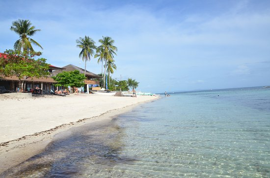 Malapascua Legend: The beach in front of the hotel