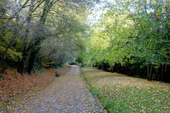 Parc de la Penfeld : en automne
