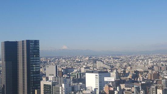 Cerulean Tower Tokyu Hotel: 20170113_083651_large.jpg