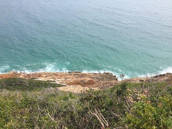Plettenberg Bay, Republika Południowej Afryki: IMG-20170107-WA0011_large.jpg