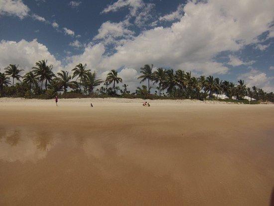 Hotel Transamerica Ilha de Comandatuba: photo1.jpg