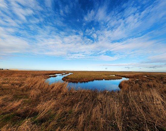 Sheerness, UK: Elmley National Nature Reserve