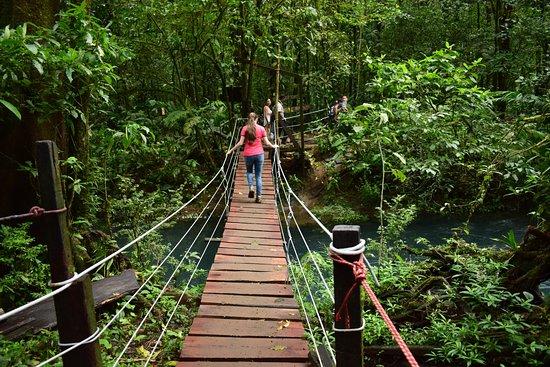 Tenorio Volcano National Park, Costa Rica: Puentes colgantes