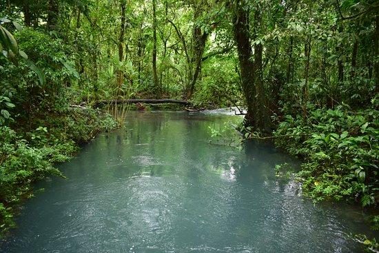 Tenorio Volcano National Park, Costa Rica: manso del río
