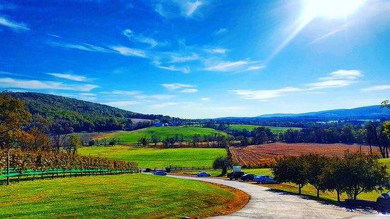 Purcellville, VA: Mountain view