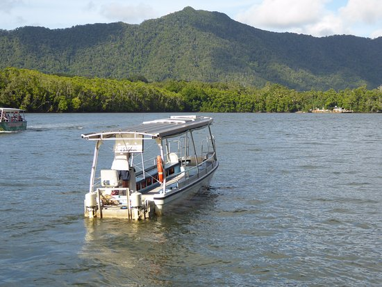 Daintree, Australia: Beautiful scenery