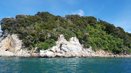 Кайтеритери, Новая Зеландия: Abel Tasman National Park