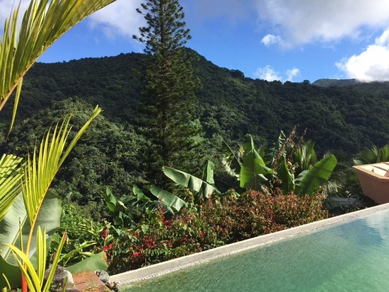 Casa Flamboyant: Pool Views