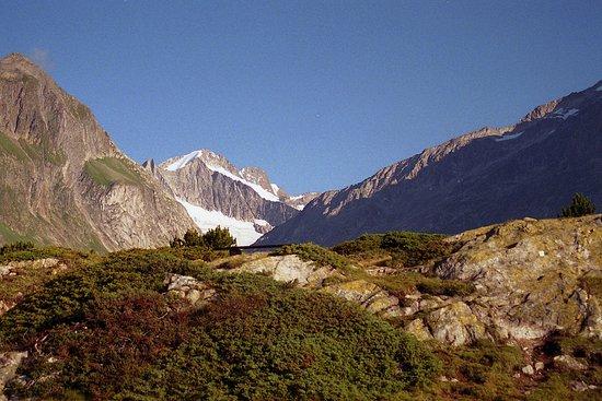 Aletsch Glacier: panorama