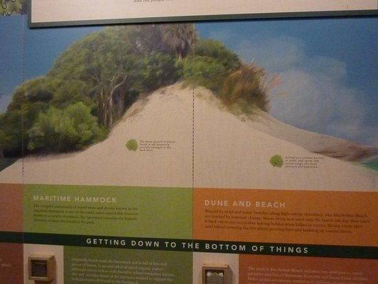 North Palm Beach, FL: John D. MacArthur Beach State Park