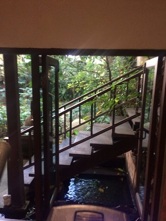 Santitham Guest House: View from the cross trainer!