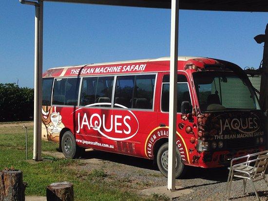 Mareeba, Australia: Tour bus!