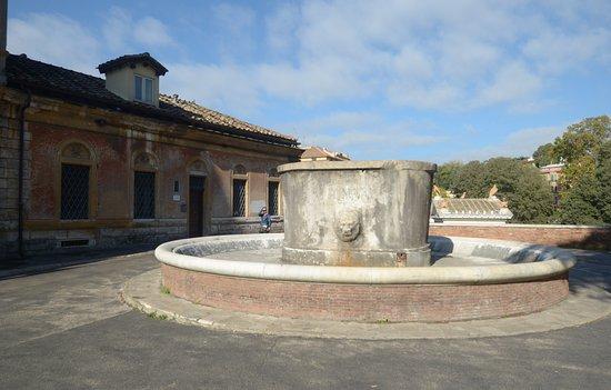 Fontana di Viale Gabriele D'Annunzio