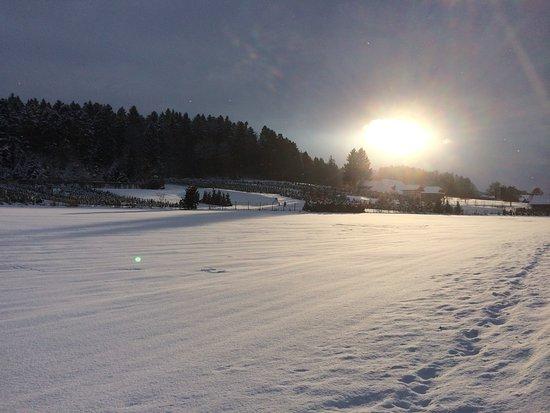 Wintersonnenuntergang bei Langenthal Richtung Luzern