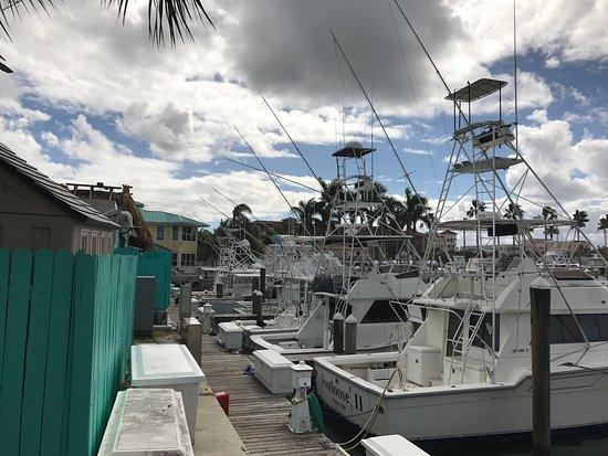 Φορτ Πιρς, Φλόριντα: photo1.jpg