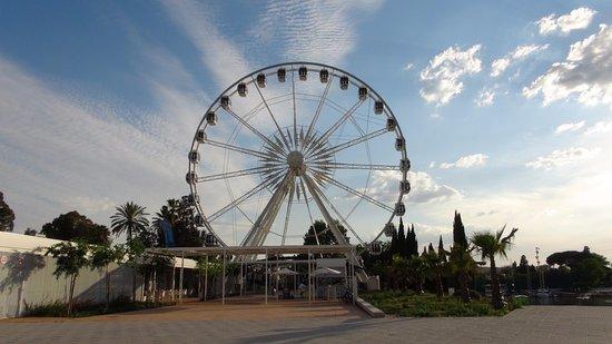La Noria de Sevilla: Noria di Siviglia