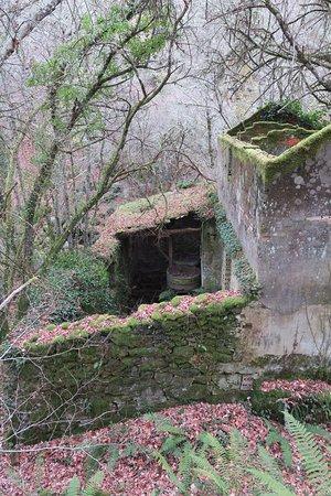 Province of Ourense, Spanje: Muiños (molinos) Ruta de senderismo Río Firveda (Porqueira/Ourense)