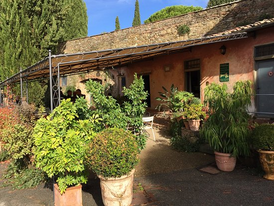 Greve in Chianti, Italia: It was just a perfect day and wine tour!