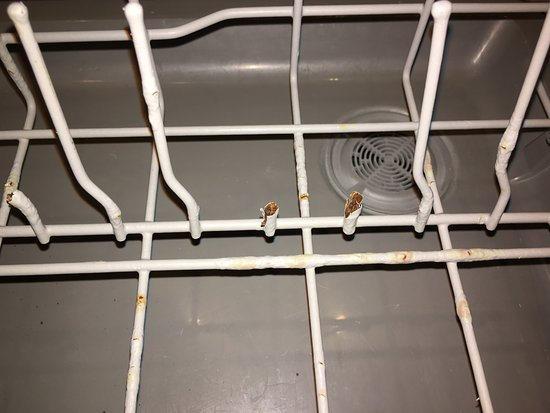 The Bay Club at Waikoloa Beach Resort: Just a few of the broken prongs in dishwasher
