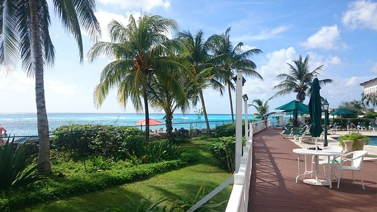 Worthing, Barbados: DSC_0065_large.jpg