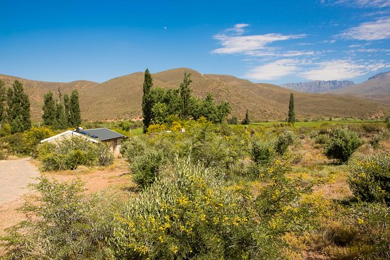 Ladismith, South Africa: Landschaft um die Farm Mymering
