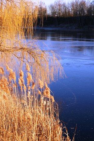 Foto de Opava