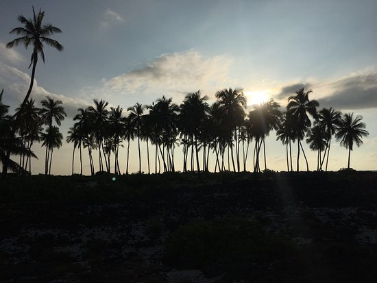 Honaunau, Hawái: photo5.jpg