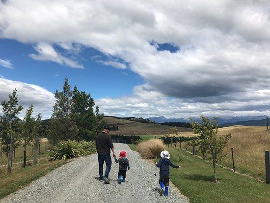 Dusky Ridges - Te Anau farmstay Bed and Breakfast