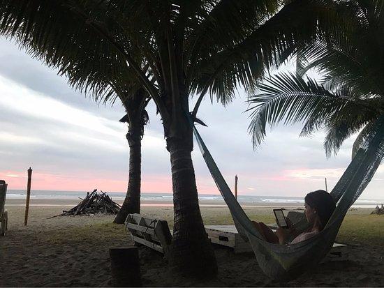Esterillos Este, Costa Rica: Hammocks all over the hotel grounds