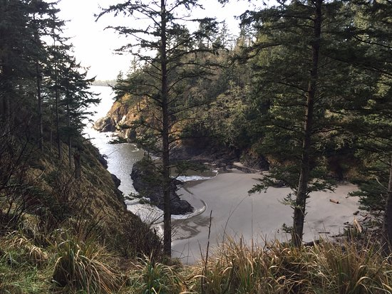 Ilwaco, WA: Beautiful untouched cove along trail walk to lighthouse