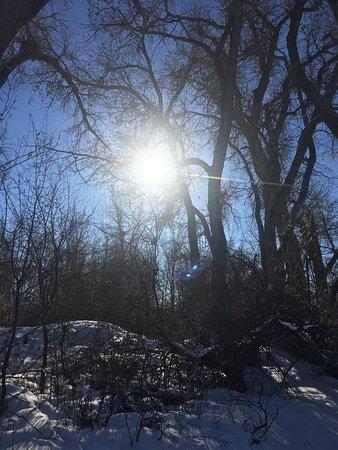 Billings, MT: photo0.jpg