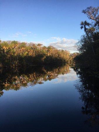 DeLand, FL: photo3.jpg