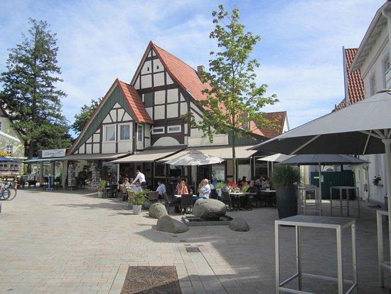 Bad Salzuflen Hotel Hund